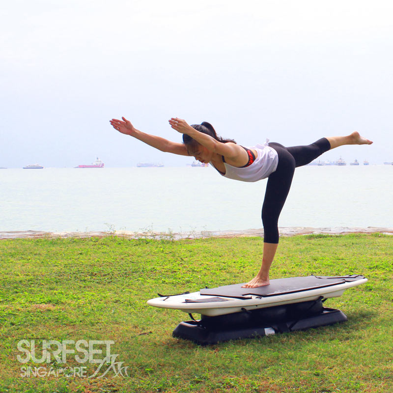 SURFSET Challenge Poses September 2016
