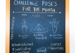 Challenge Poses 2017 February sq