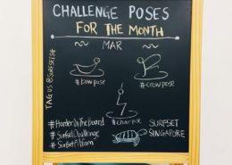 SURFSET Challenge Poses Mar 2017